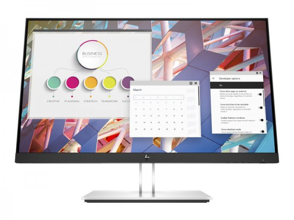 HP E24 G4 FHD Monitor (9VF99AT)