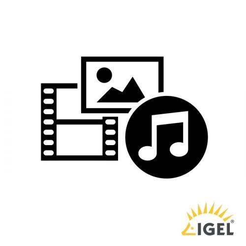 IGEL Multimedia Codec-Pack Field Upgrade License for IGEL OS 10